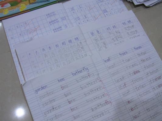 保育園の算数・マンダリン・英語のノート。